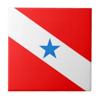 Para Brazil flag province region symbol Tile