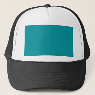 Paradingly Posh Teal Color Trucker Hat
