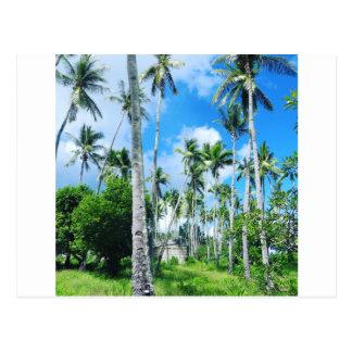 Paradis dans le Pacifique Carte Postale