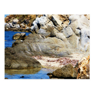 Paradise Beach - Mykonos, Greece Postcard