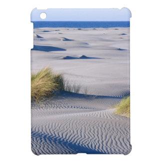 Paradise coastline with wind textured sand dunes iPad mini cover