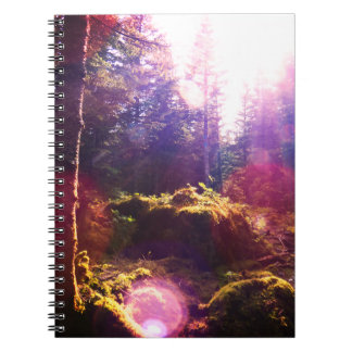 Paradise Forest Notebook