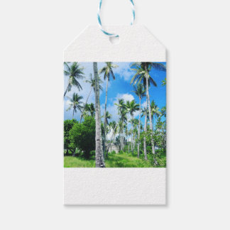 Paradise in the Pacific Gift Tags