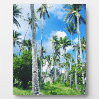 Paradise in the Pacific Plaque