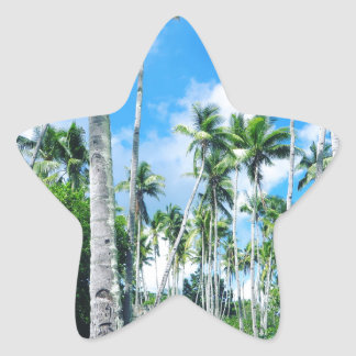 Paradise in the Pacific Star Sticker