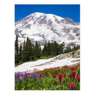 Paradise Mt. Rainer Postcard