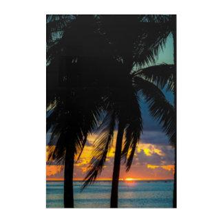 Paradise Palms Beach Sunset Nature Wall Art