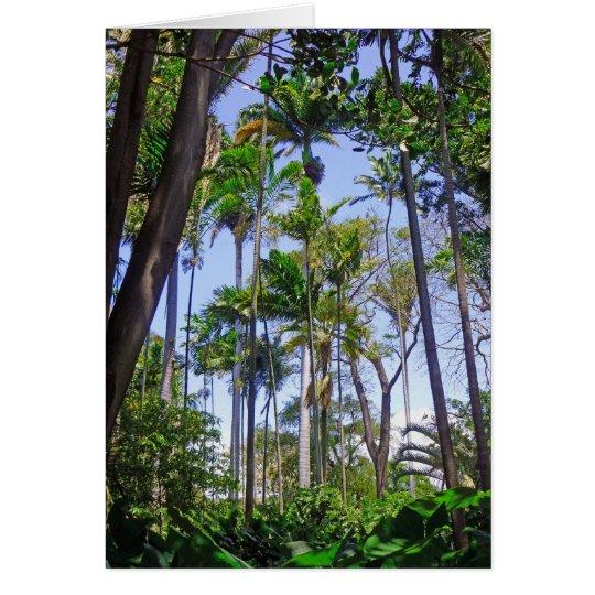 Paradise Palms Card