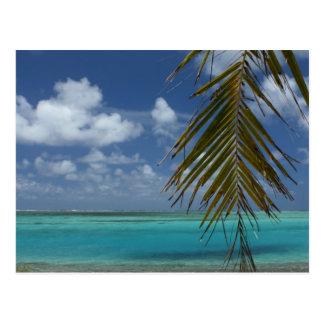 Paradise Postcard
