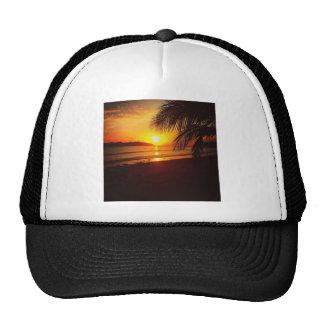 Paradise sunset trucker hat