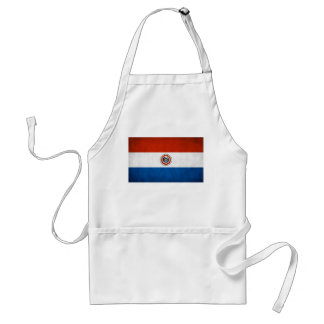 Paraguay National Flag Adult Apron