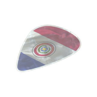 Paraguayan flag pearl celluloid guitar pick
