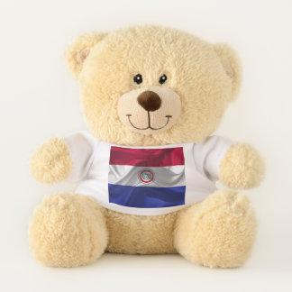 Paraguayan flag teddy bear