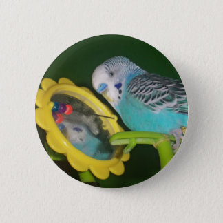 Parakeet Bird in the Mirror Favorite Pet Button! 2 Inch Round Button