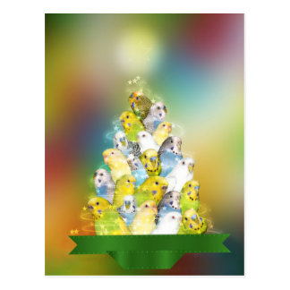 Parakeet Christmas tree Postcard