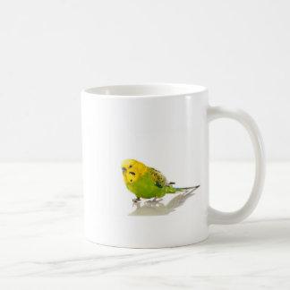 parakeet, coffee mug