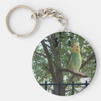 Parakeet Keychain