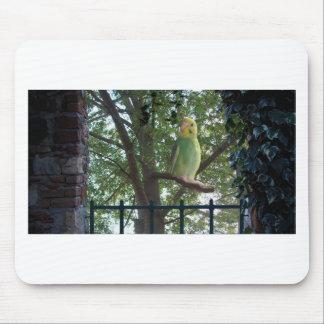 Parakeet Mouse Pad