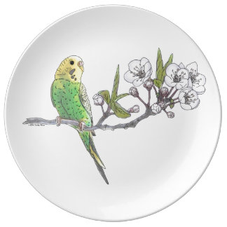 Parakeet on Branch Porcelain Plates