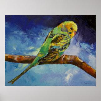Parakeet Painting Print