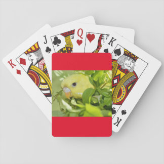 Parakeet Peeks Playing Cards, Standard Index faces Poker Deck