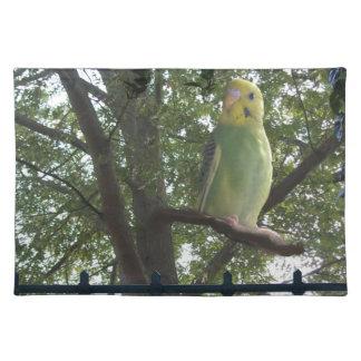 Parakeet Placemat