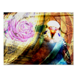 Parakeet rose collage- Print