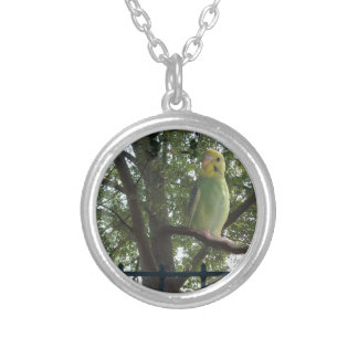 Parakeet Silver Plated Necklace