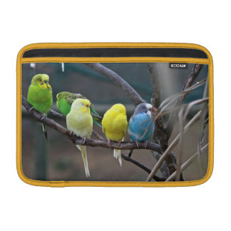 Parakeets Budgies | Birds Photo Wildlife Sleeve For MacBook Air