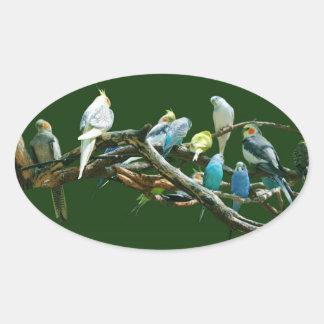 Parakeets N Cockatiels Oval Sticker