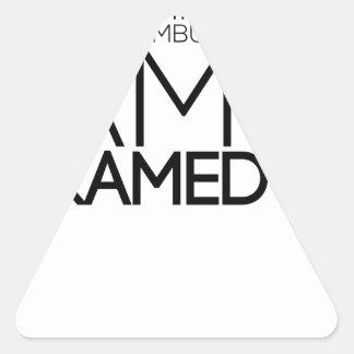 paramedic design cute triangle sticker