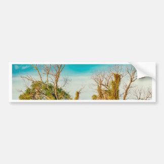 Parana River, San Nicolas, Argentina Bumper Sticker