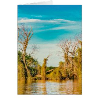 Parana River, San Nicolas, Argentina Card