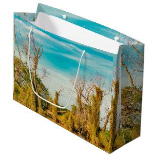 Parana River, San Nicolas, Argentina Large Gift Bag