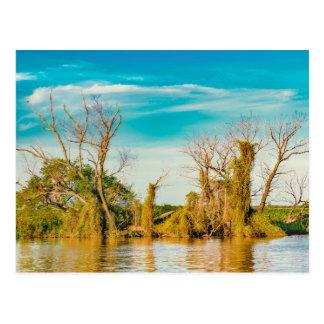 Parana River, San Nicolas, Argentina Postcard