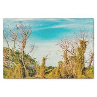 Parana River, San Nicolas, Argentina Tissue Paper