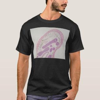 Parasitic nematode worm (Ascaris sp.) T-Shirt