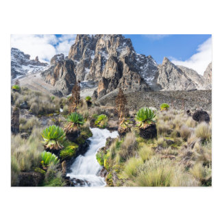 Parc national central du mont Kenya Carte Postale
