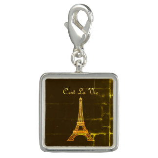 Paris: C'est La Vie  *MULTIPLE STYLE OPTIONS* Photo Charm