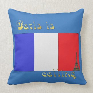 Paris is calling pillow