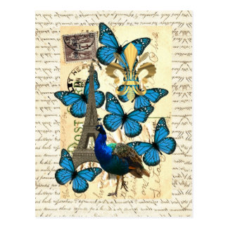 Paris peacock and butterflies post card