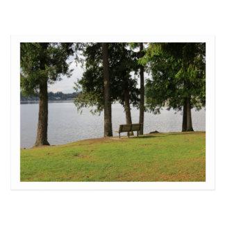 Park Bench at Lake Meridian Postcard