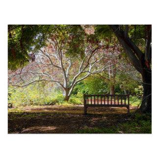 Park Bench Postcard