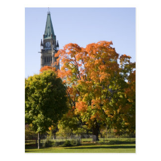 Park beside the Parliment Building in Ottawa, Postcard