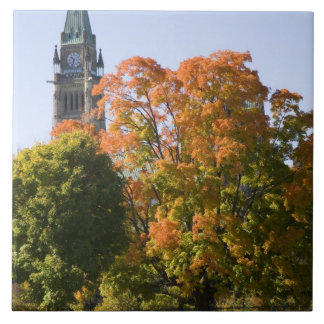 Park beside the Parliment Building in Ottawa, Tile