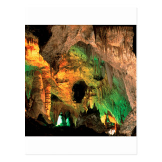 Park Carlsbad Caverns New Mexico Postcard