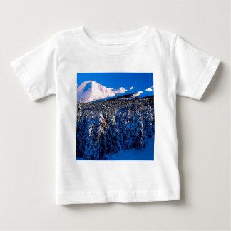 Park Kenai Ains Canyon Creek Alaska Baby T-Shirt
