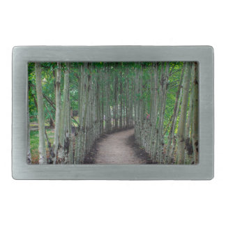Park Path Belt Buckle