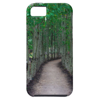 Park Path iPhone 5 Cover