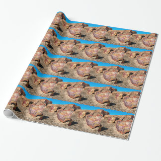 Park Petrified Forest Wrapping Paper